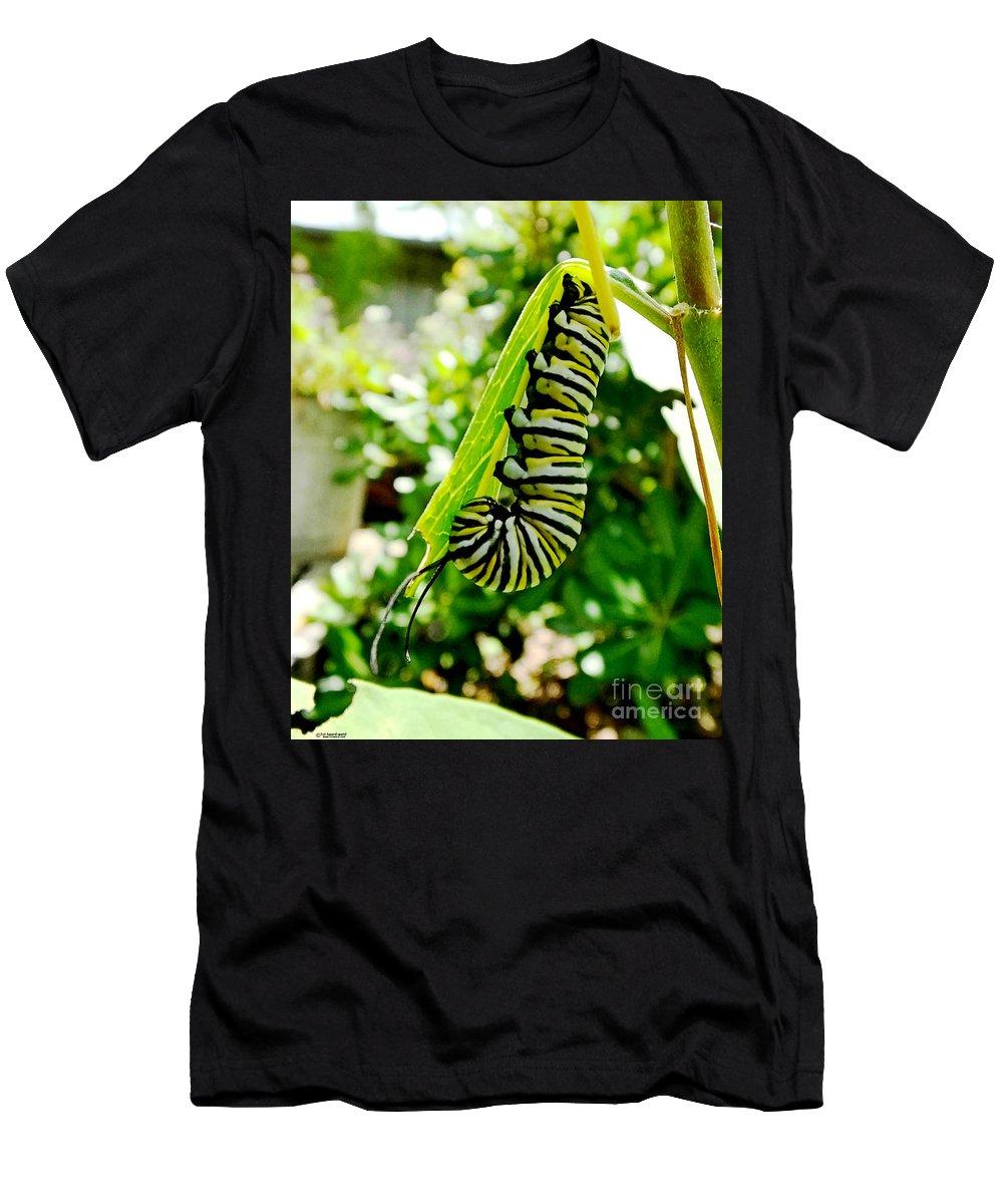 Caterpillar Men's T-Shirt (Athletic Fit) featuring the photograph Monarch Caterpillar 5 by Lizi Beard-Ward