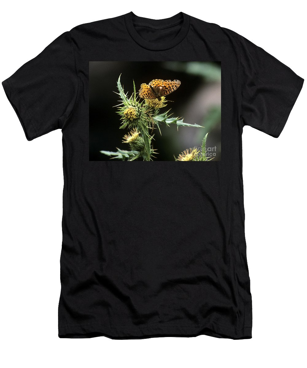 Butterfly Men's T-Shirt (Athletic Fit) featuring the photograph Monarch On Thistle by Kathy McClure