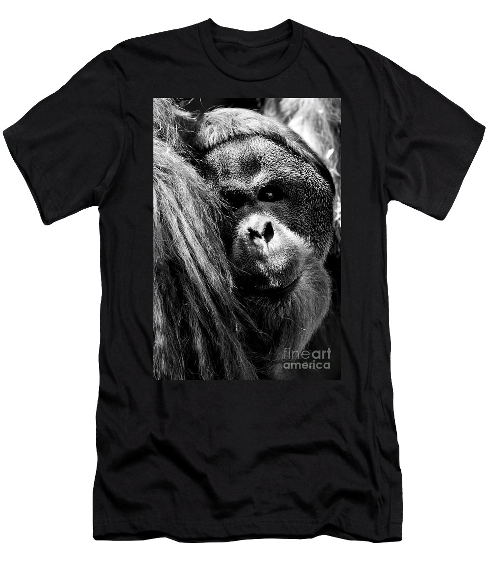 Animals Men's T-Shirt (Athletic Fit) featuring the photograph Monkey by Gunnar Orn Arnason