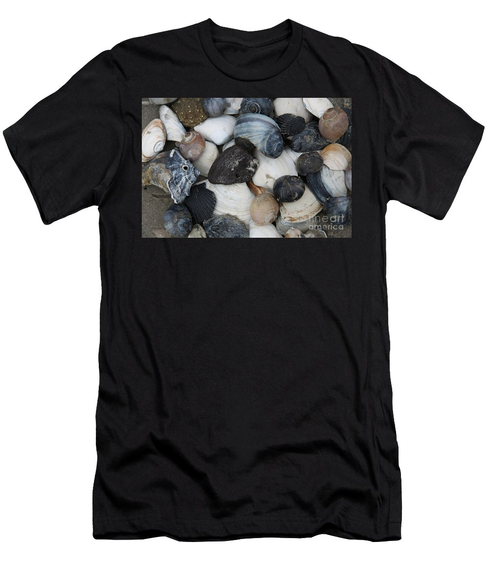 Moon Snails Men's T-Shirt (Athletic Fit) featuring the photograph Moon Snails And Shells Still Life by Christiane Schulze Art And Photography