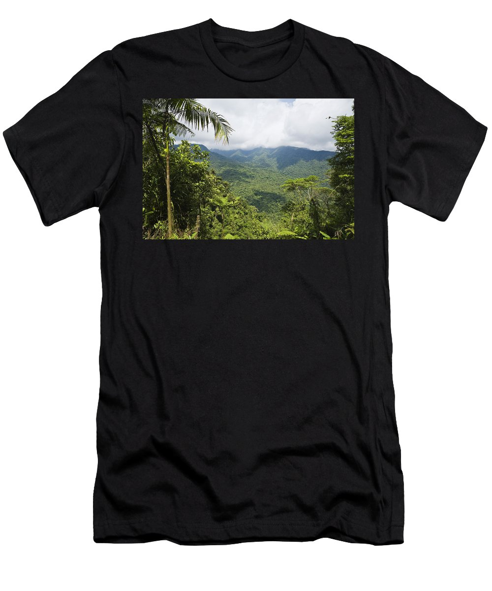 Feb0514 Men's T-Shirt (Athletic Fit) featuring the photograph Mountain Rainforest Costa Rica by Konrad Wothe