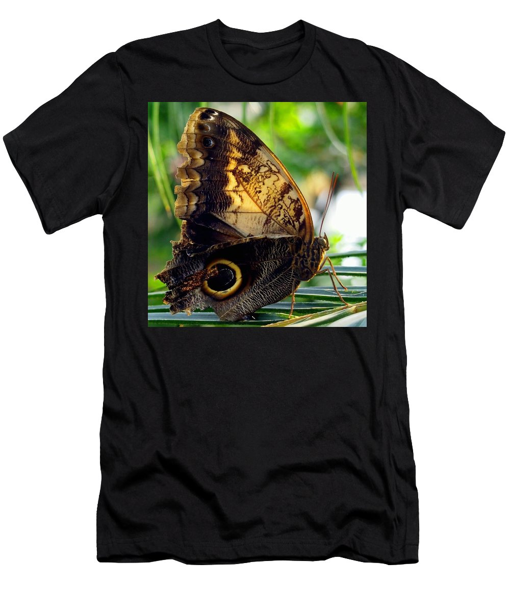 Nature Men's T-Shirt (Athletic Fit) featuring the photograph Mournful Owl Butterfly In Sunlight by Amy McDaniel