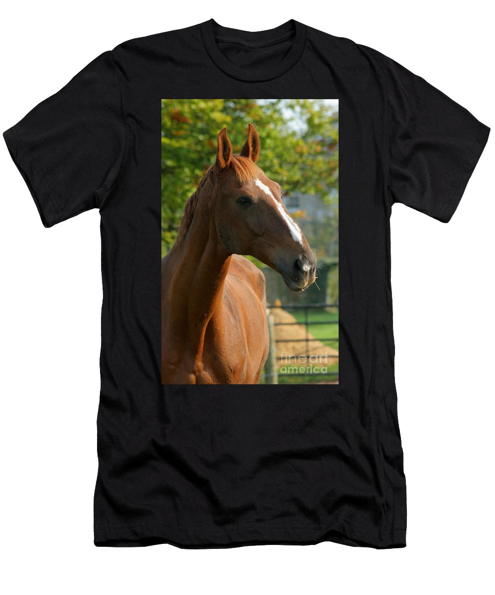 Horse Men's T-Shirt (Athletic Fit) featuring the photograph Mr Handsome by Angel Ciesniarska