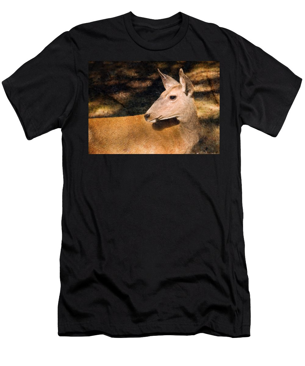 Mule Deer Men's T-Shirt (Athletic Fit) featuring the photograph Mule Deer by Melinda Fawver