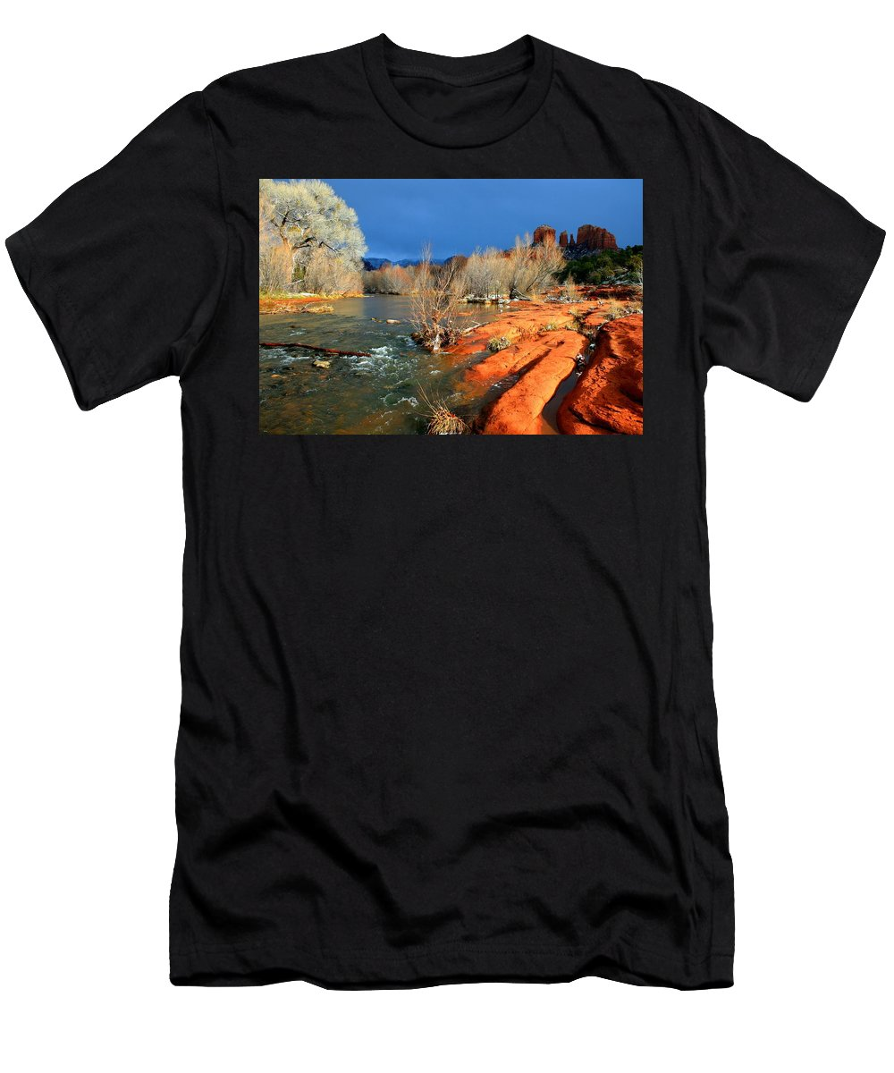 Arizona Men's T-Shirt (Athletic Fit) featuring the photograph My December by Miles Stites