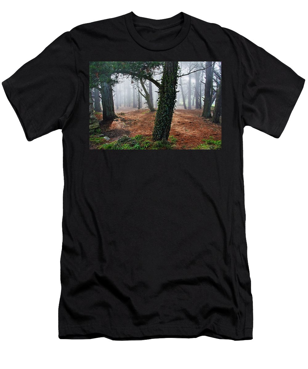 Ireland Men's T-Shirt (Athletic Fit) featuring the photograph Mysterious Forest by Aidan Moran