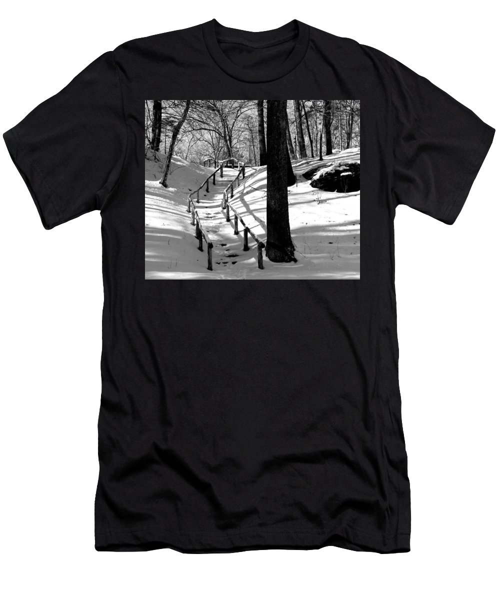 Landscape - B&w - Nature Trail On A Sunny Winter Day In Gillette Castle State Park Ct. Men's T-Shirt (Athletic Fit) featuring the photograph Nature Trail by Ursula Coccomo
