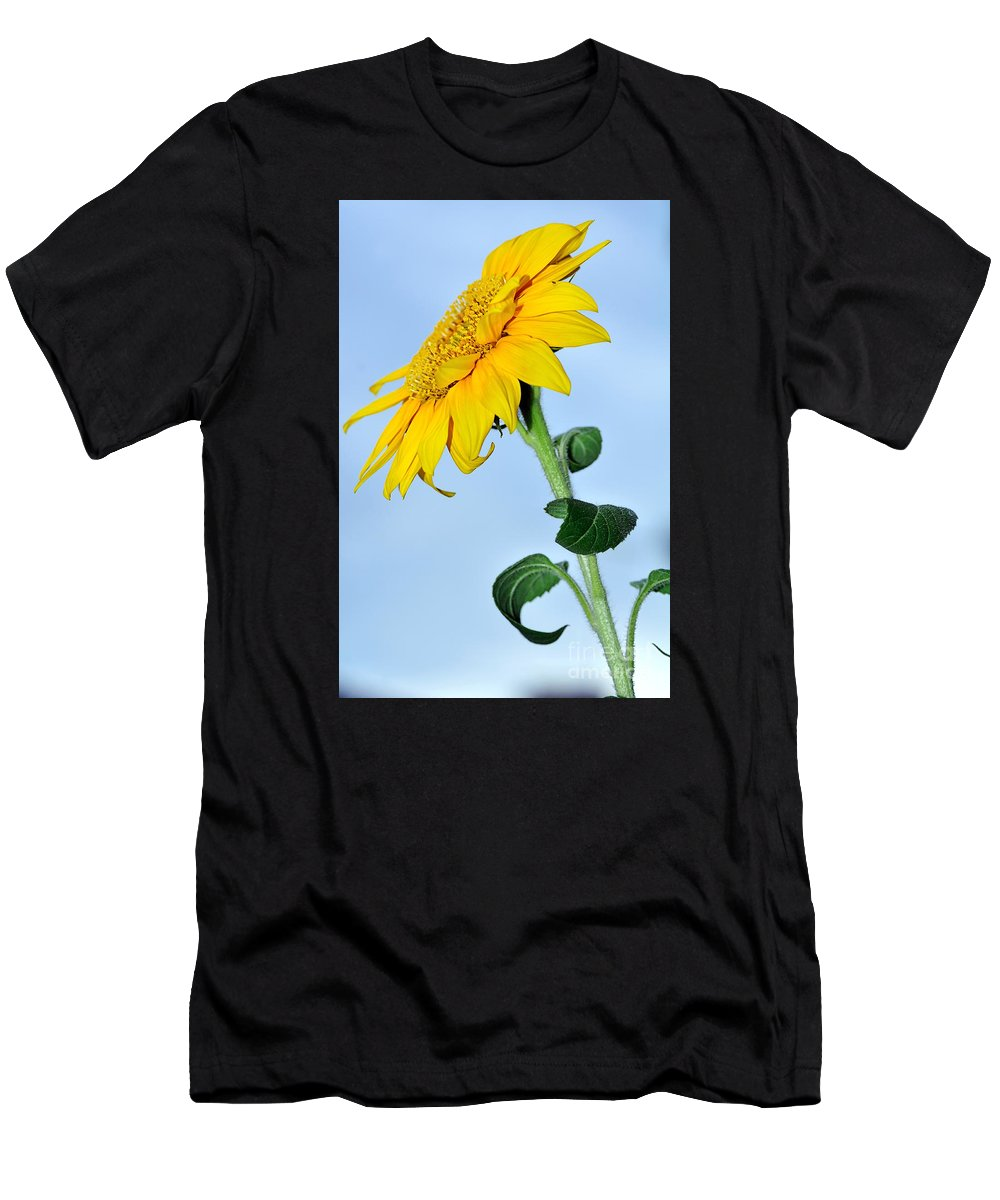 Photography Men's T-Shirt (Athletic Fit) featuring the photograph Nature's Sunshine by Kaye Menner