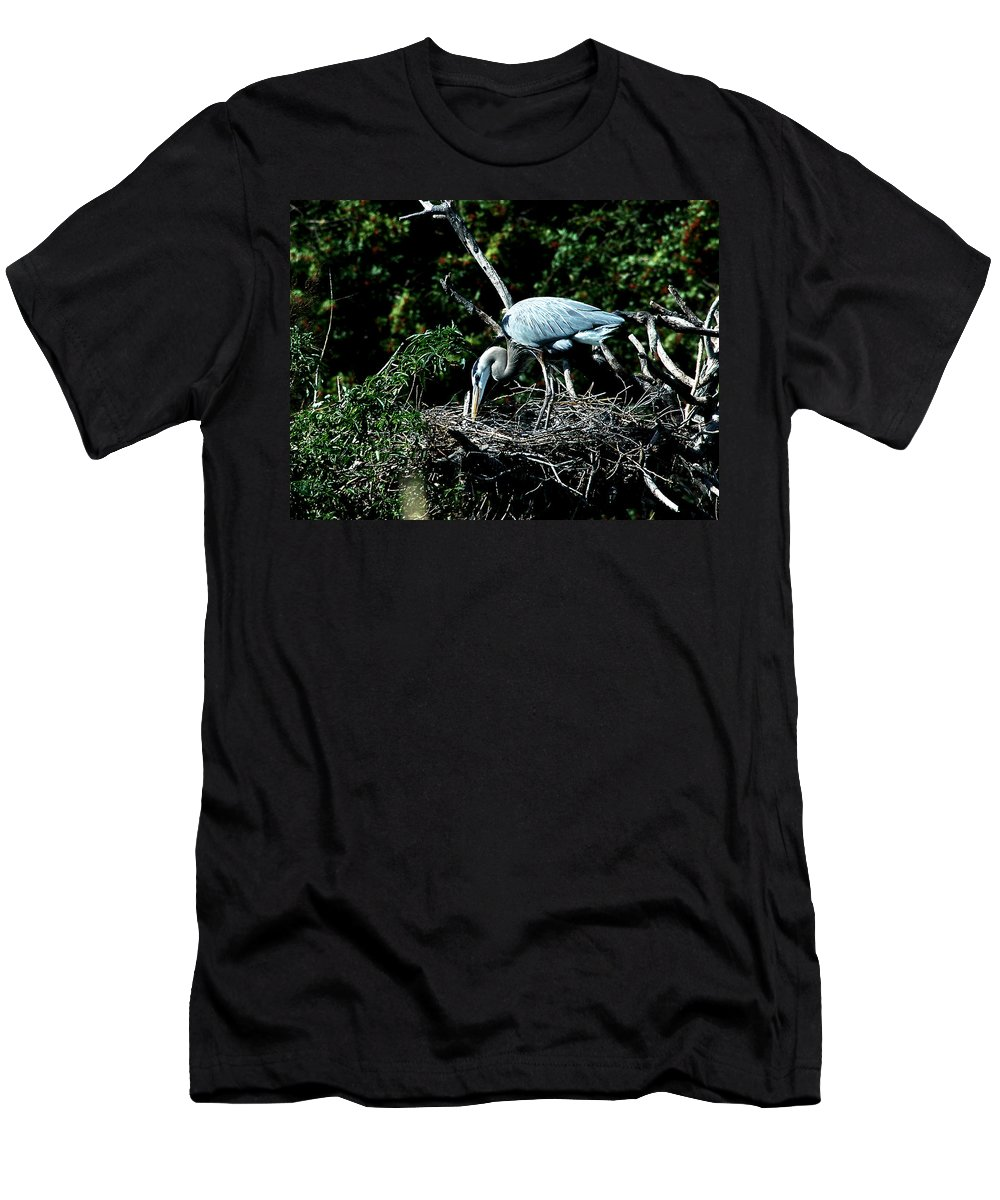 Great Blue Heron Men's T-Shirt (Athletic Fit) featuring the photograph Nesting Season by Norman Johnson