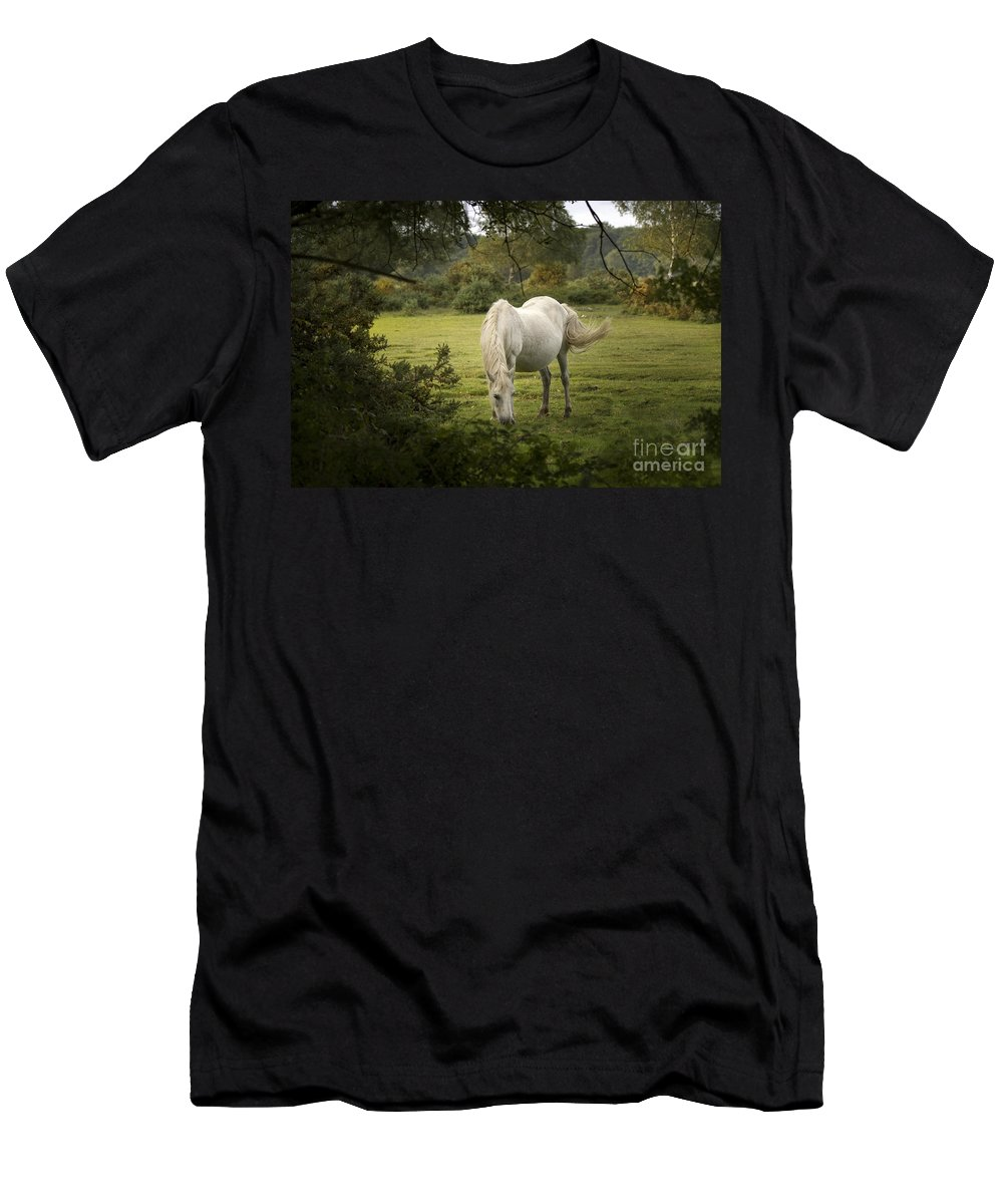 New Forest Men's T-Shirt (Athletic Fit) featuring the photograph New Forest Pony by Angel Ciesniarska