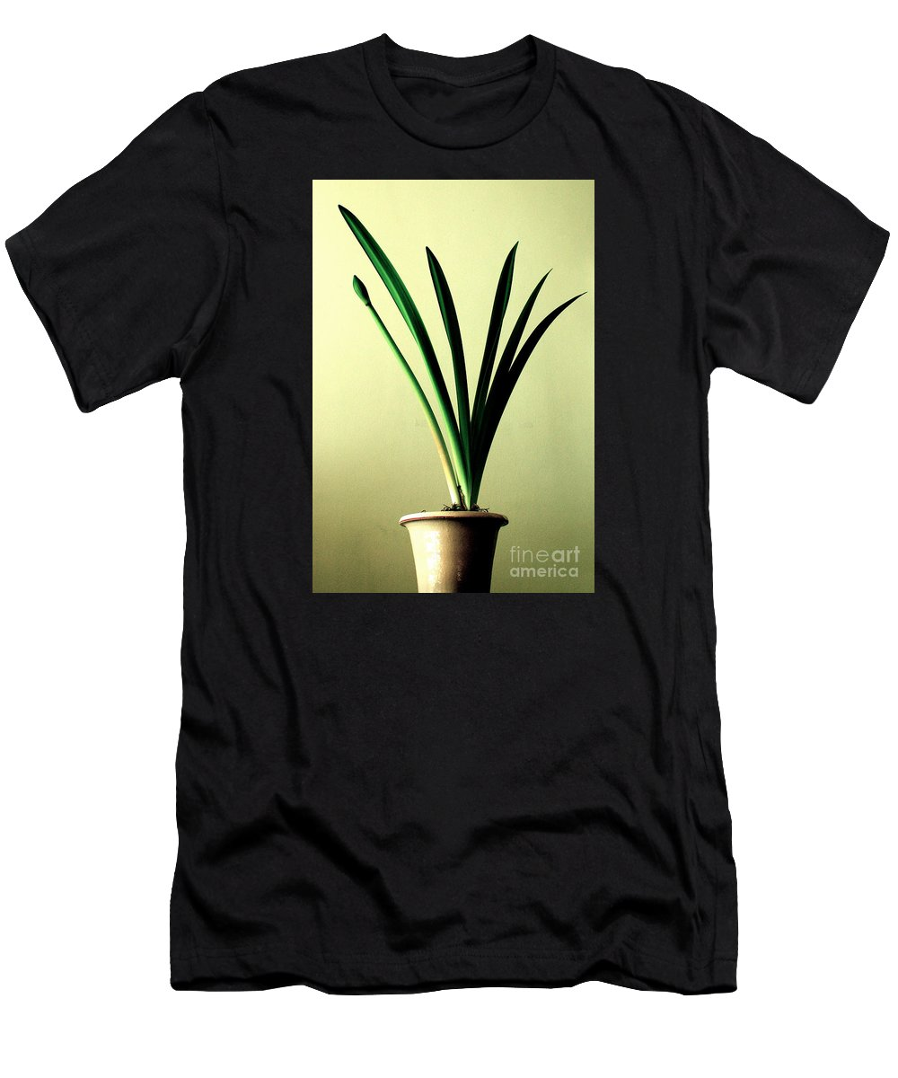 Amaryllis Men's T-Shirt (Athletic Fit) featuring the photograph Fanned Leaves Of An Amaryllis by Toula Mavridou-Messer