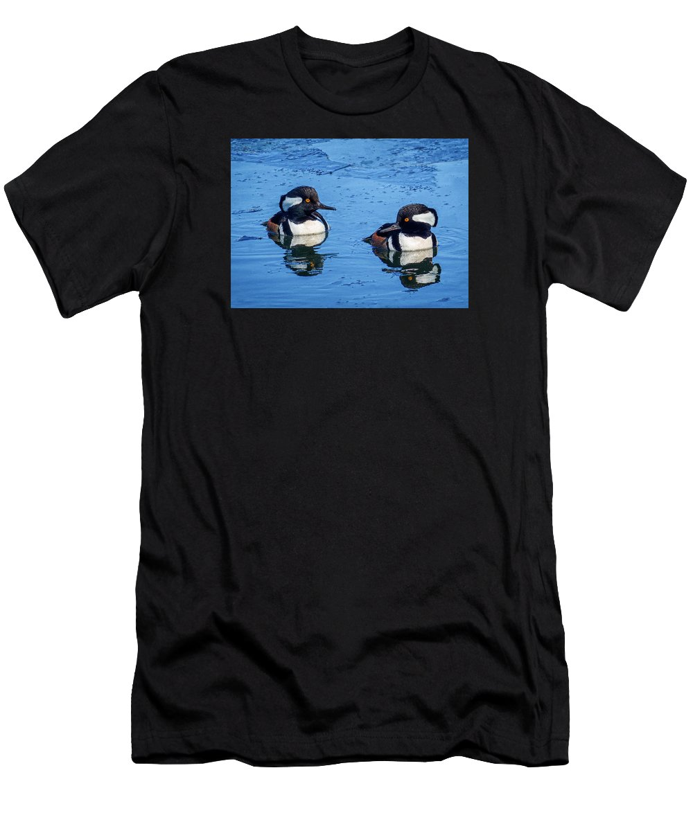 Duck Men's T-Shirt (Athletic Fit) featuring the photograph Male Hooded Merganser Pair by Patti Deters