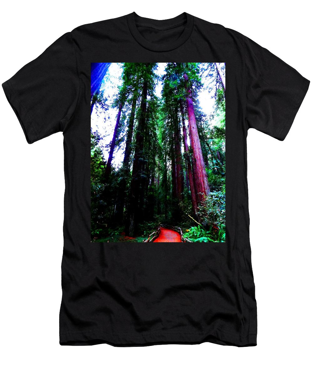 Muir Woods National Monument Men's T-Shirt (Athletic Fit) featuring the photograph Nobility by Cathleen Cario-Reece