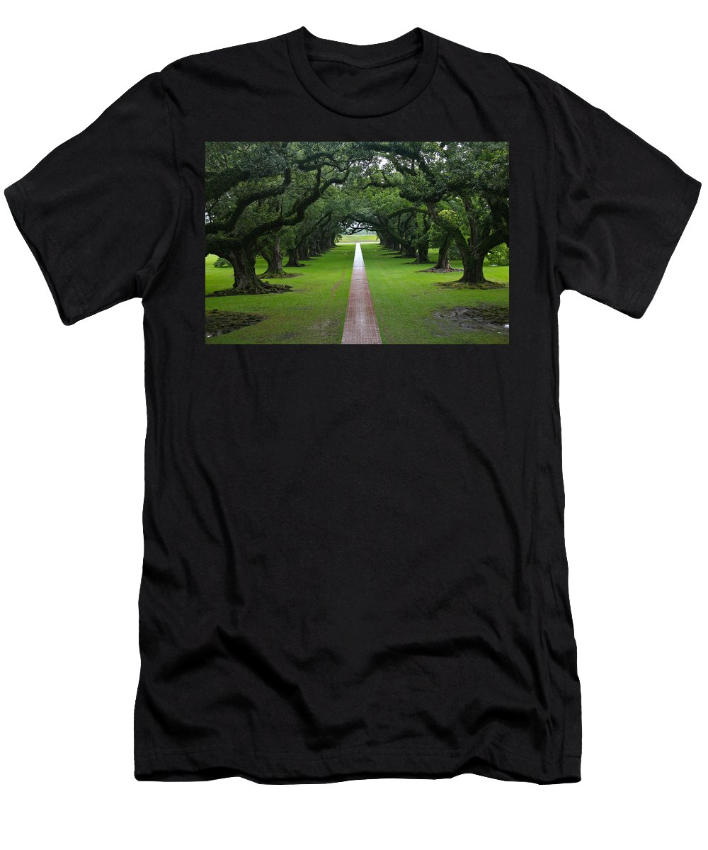 Tree Men's T-Shirt (Athletic Fit) featuring the photograph Oak Alley by Denise Mazzocco