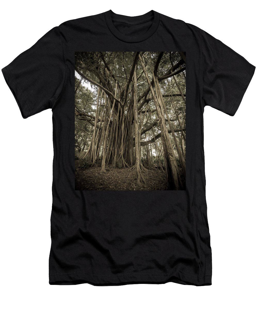 3scape Men's T-Shirt (Athletic Fit) featuring the photograph Old Banyan Tree by Adam Romanowicz