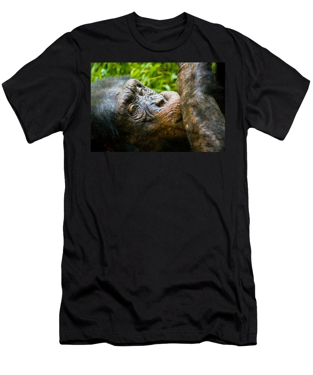 Close Men's T-Shirt (Athletic Fit) featuring the photograph Old Chimp by Jonny D