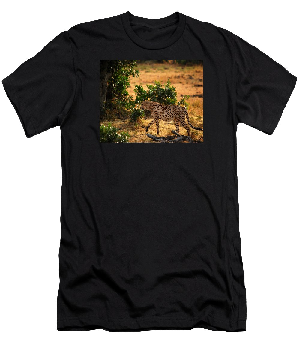 Wildlife Men's T-Shirt (Athletic Fit) featuring the photograph On Patrol by Pamela Peters