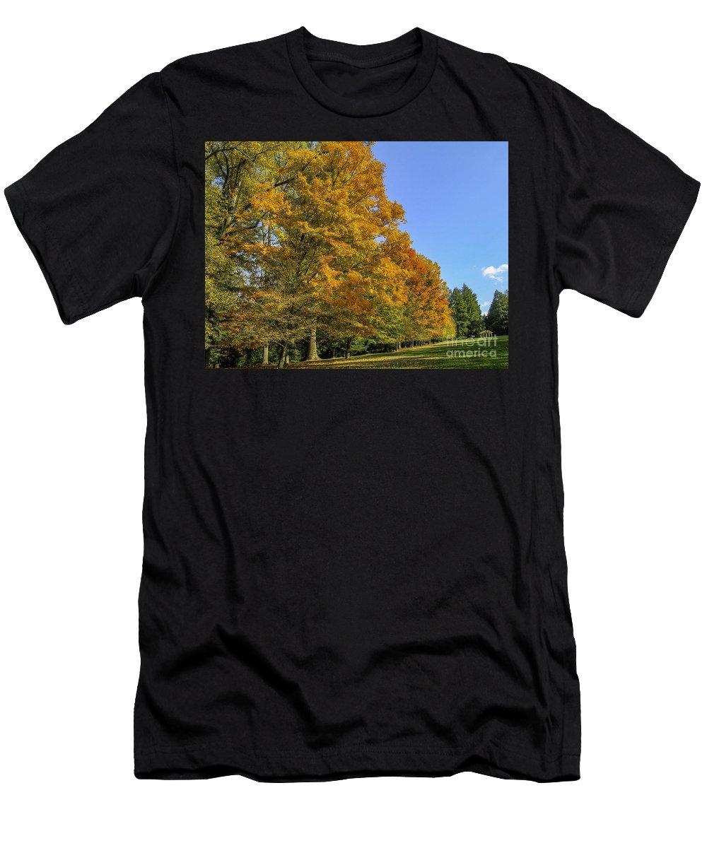 Fall Men's T-Shirt (Athletic Fit) featuring the photograph On The Grounds Of Biltmore by Dale Powell