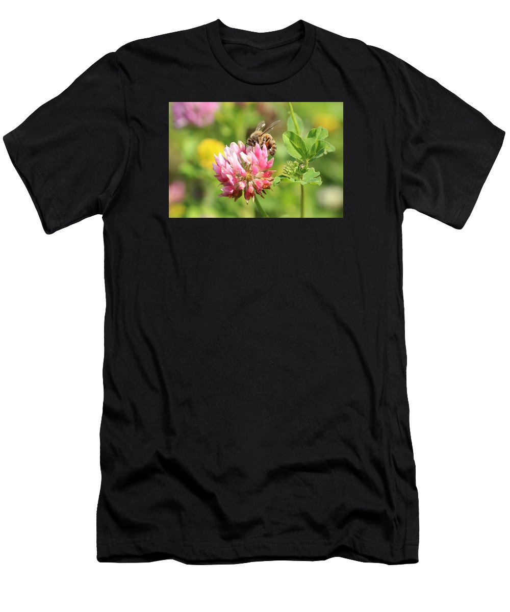 Honeybee Men's T-Shirt (Athletic Fit) featuring the photograph On Top Of The Blossom by Lucinda VanVleck