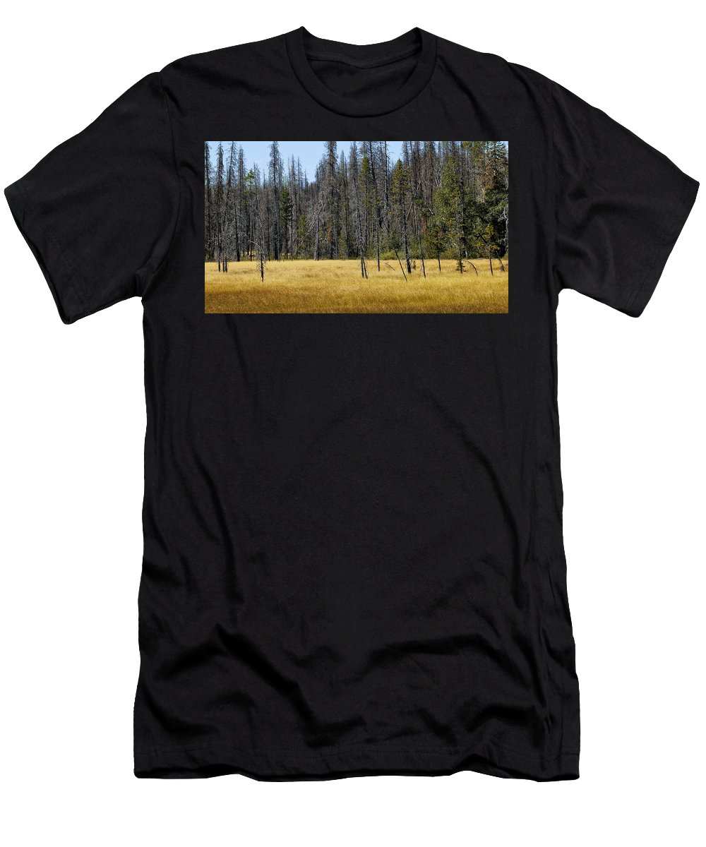 Meadow Men's T-Shirt (Athletic Fit) featuring the photograph Open Meadow 2 by Rich Franco