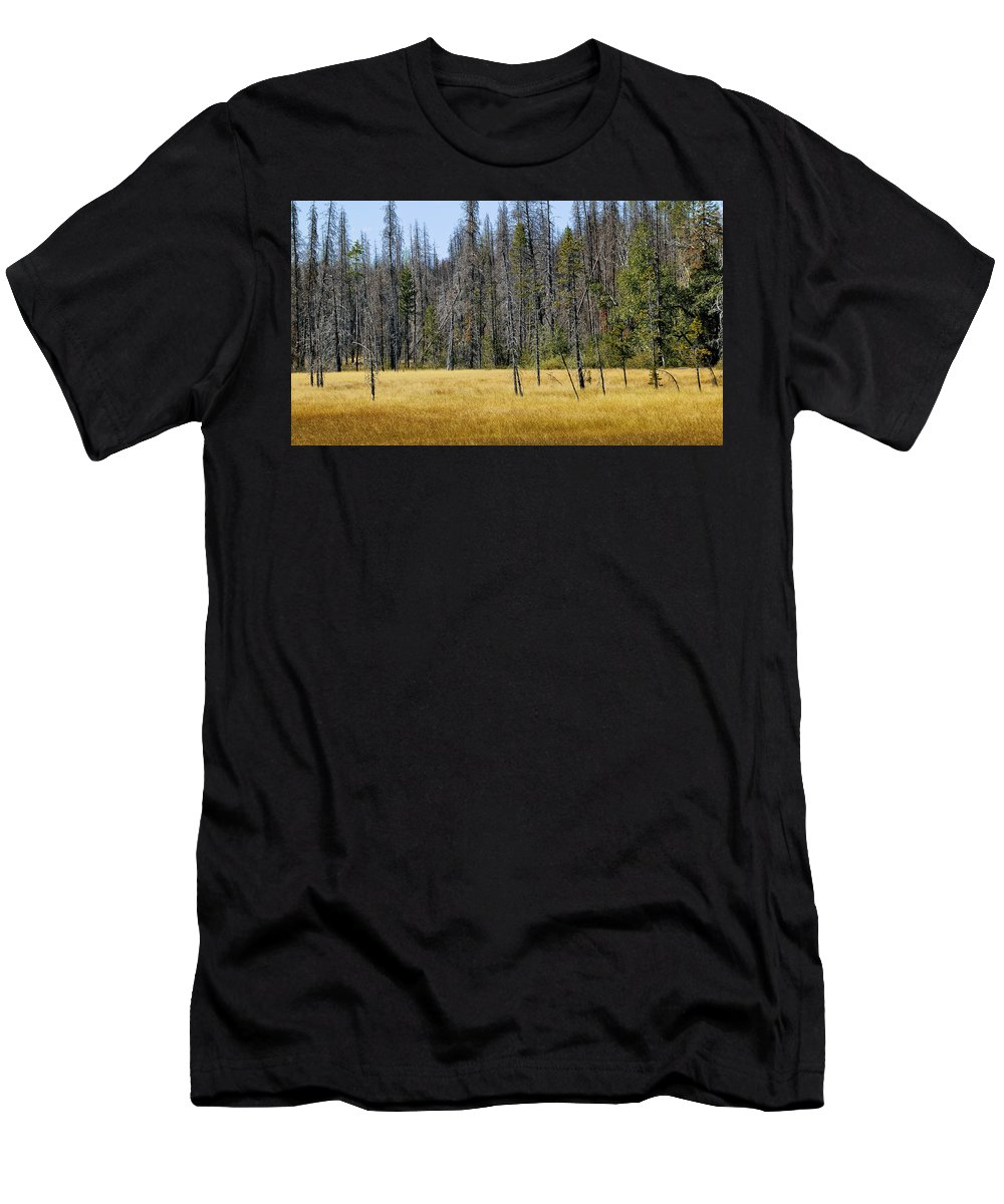 Glacier National Park Men's T-Shirt (Athletic Fit) featuring the photograph Open Meadow Glacier National Park by Rich Franco