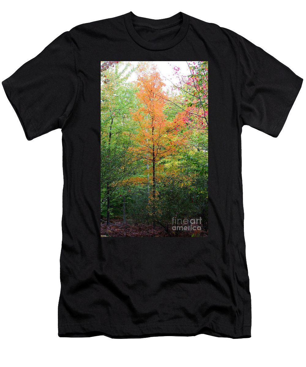 Maple Tree Men's T-Shirt (Athletic Fit) featuring the photograph Orange Maple by Stephanie Kripa