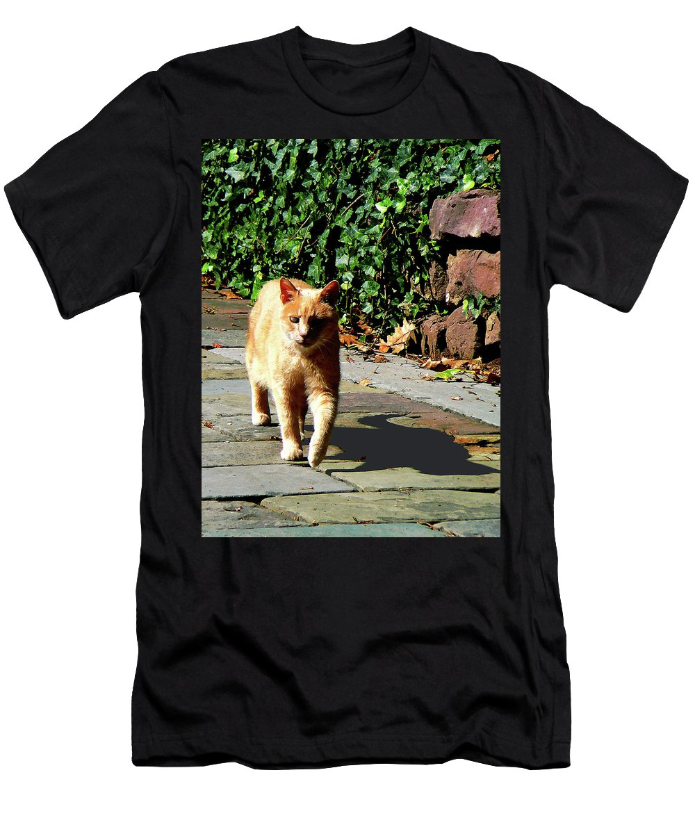 Cat Men's T-Shirt (Athletic Fit) featuring the photograph Orange Tabby Taking A Walk by Susan Savad