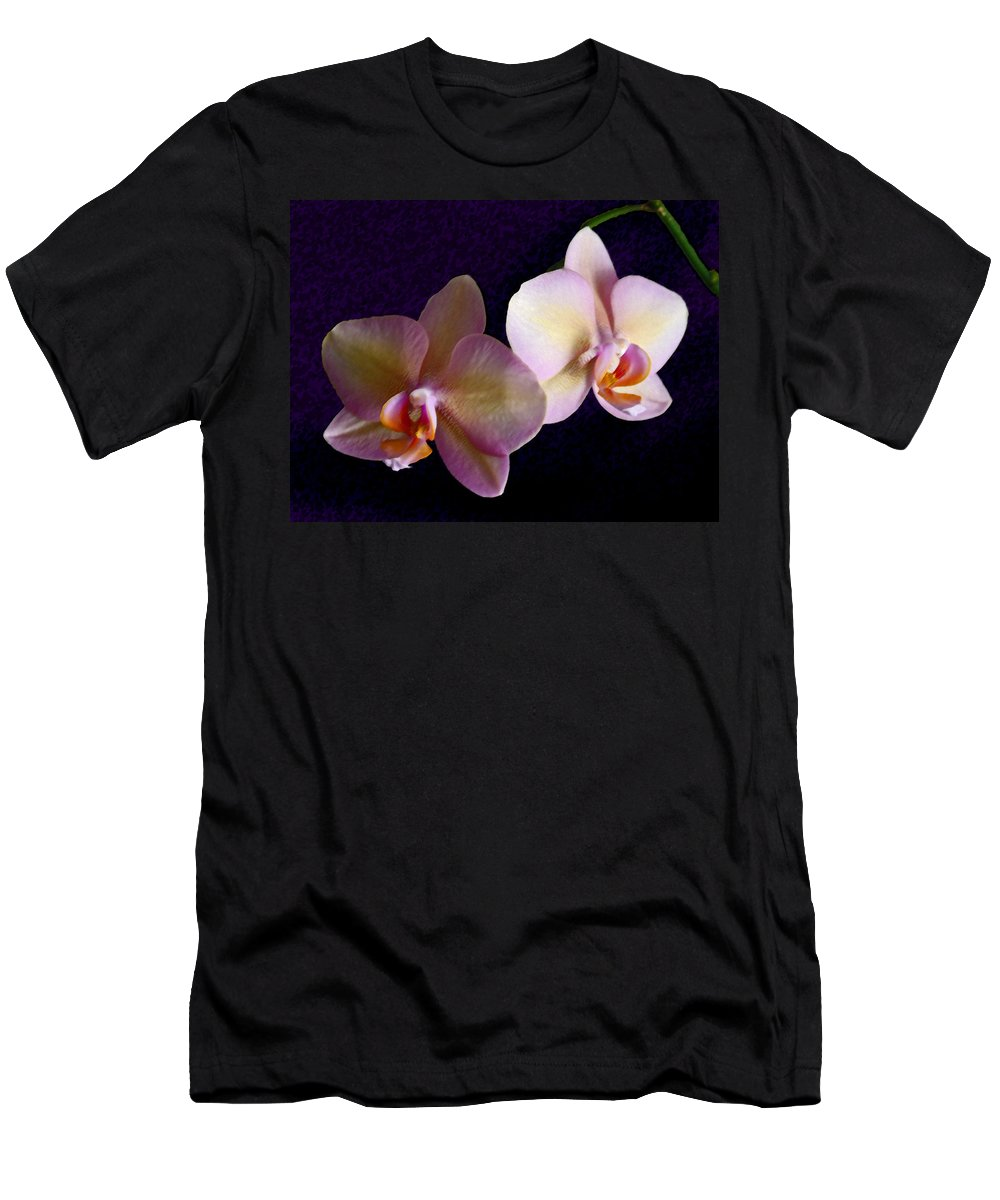 Orchid T-Shirt featuring the photograph Orchid Light by Steve Karol