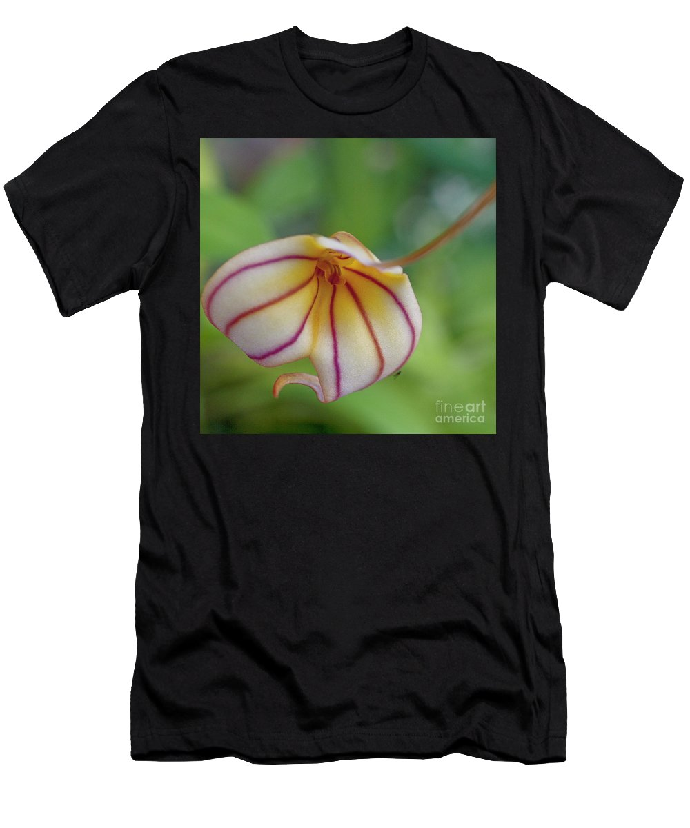 Orchid Men's T-Shirt (Athletic Fit) featuring the photograph Orchids - Masdevallia Hybrid by Heiko Koehrer-Wagner