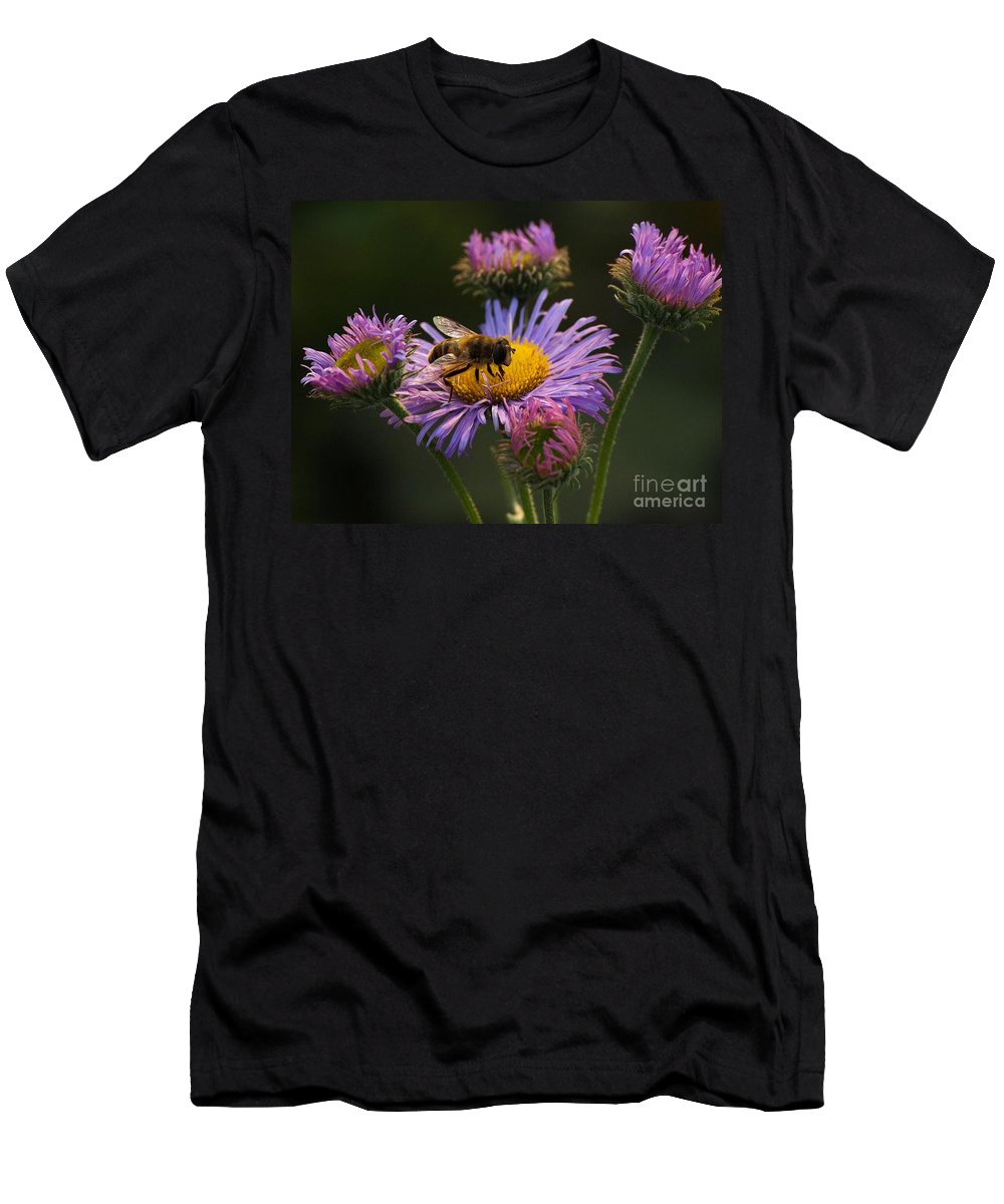 Bee Men's T-Shirt (Athletic Fit) featuring the photograph Painted By Nature by Brothers Beerens