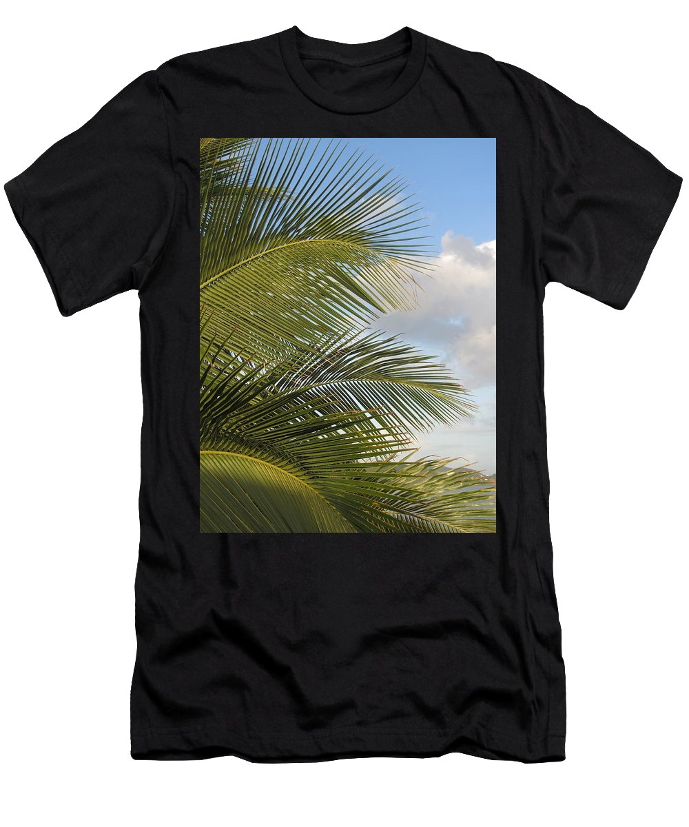Beach Men's T-Shirt (Athletic Fit) featuring the photograph Palm Close Up 3 by Anita Burgermeister