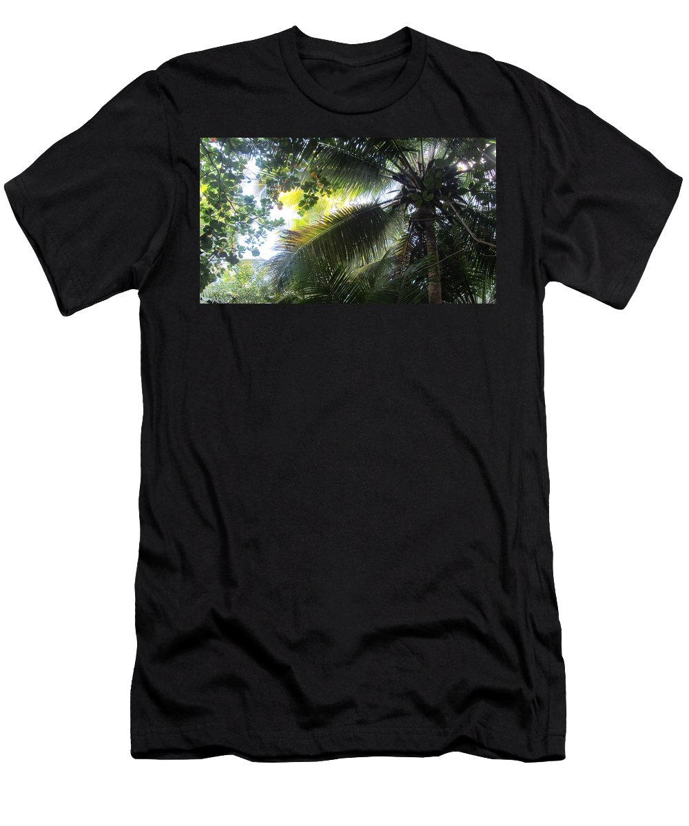 Palm Tree Men's T-Shirt (Athletic Fit) featuring the photograph Palm Pattern 1 by Anita Burgermeister