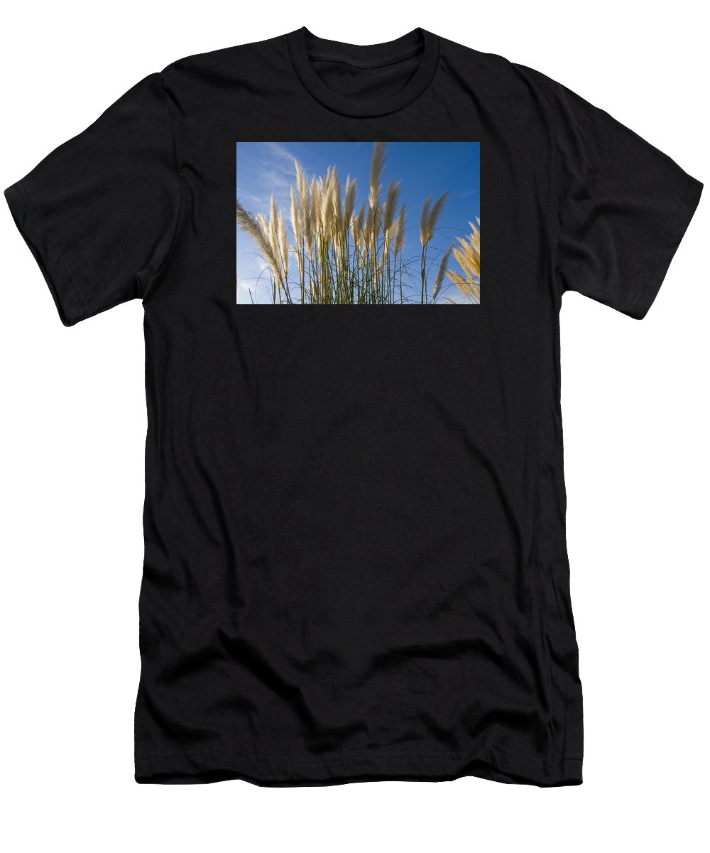 Pampas Grass Men's T-Shirt (Athletic Fit) featuring the photograph Pampas Grass by Maura Satchell