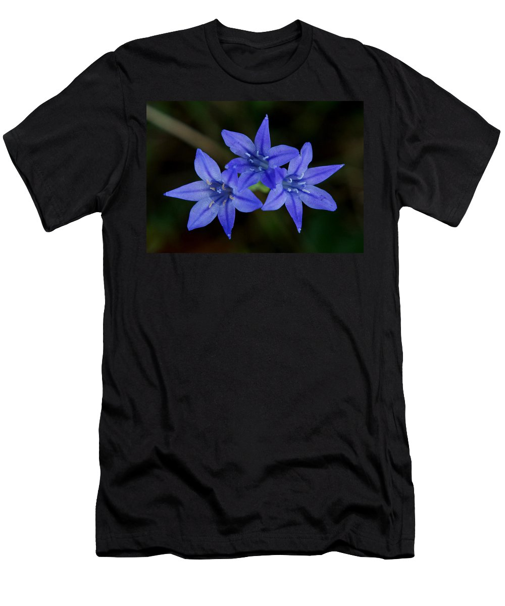 Triteleia Laxa Men's T-Shirt (Athletic Fit) featuring the photograph Paradise Lost by Kim Pate
