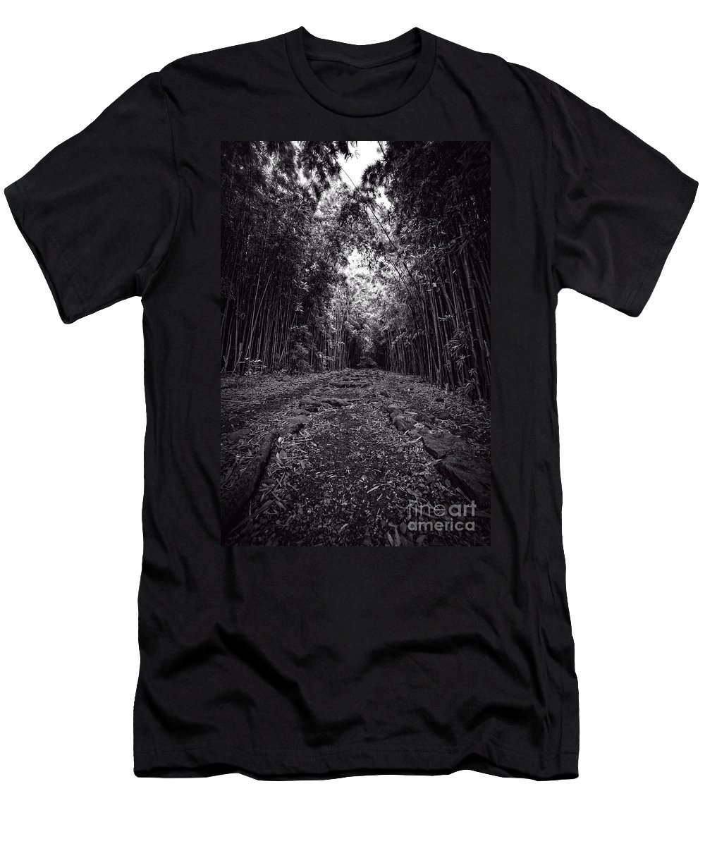 Hawaii Men's T-Shirt (Athletic Fit) featuring the photograph Pathway Through A Bamboo Forest Maui Hawaii by Edward Fielding