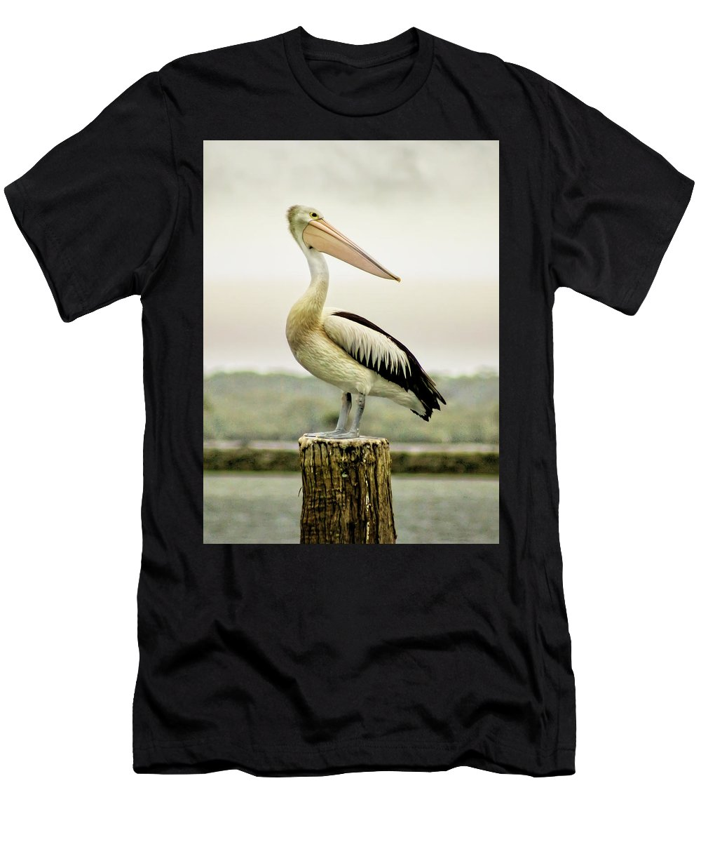 Animlas Men's T-Shirt (Athletic Fit) featuring the photograph Pelican Poise by Holly Kempe