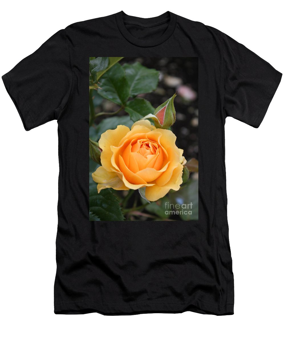 Rose Men's T-Shirt (Athletic Fit) featuring the photograph Perfect Rose by Christiane Schulze Art And Photography