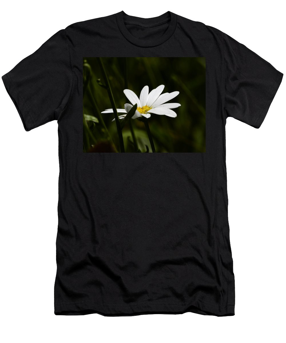 Daisy Men's T-Shirt (Athletic Fit) featuring the photograph Petals Of White by Lori Tambakis