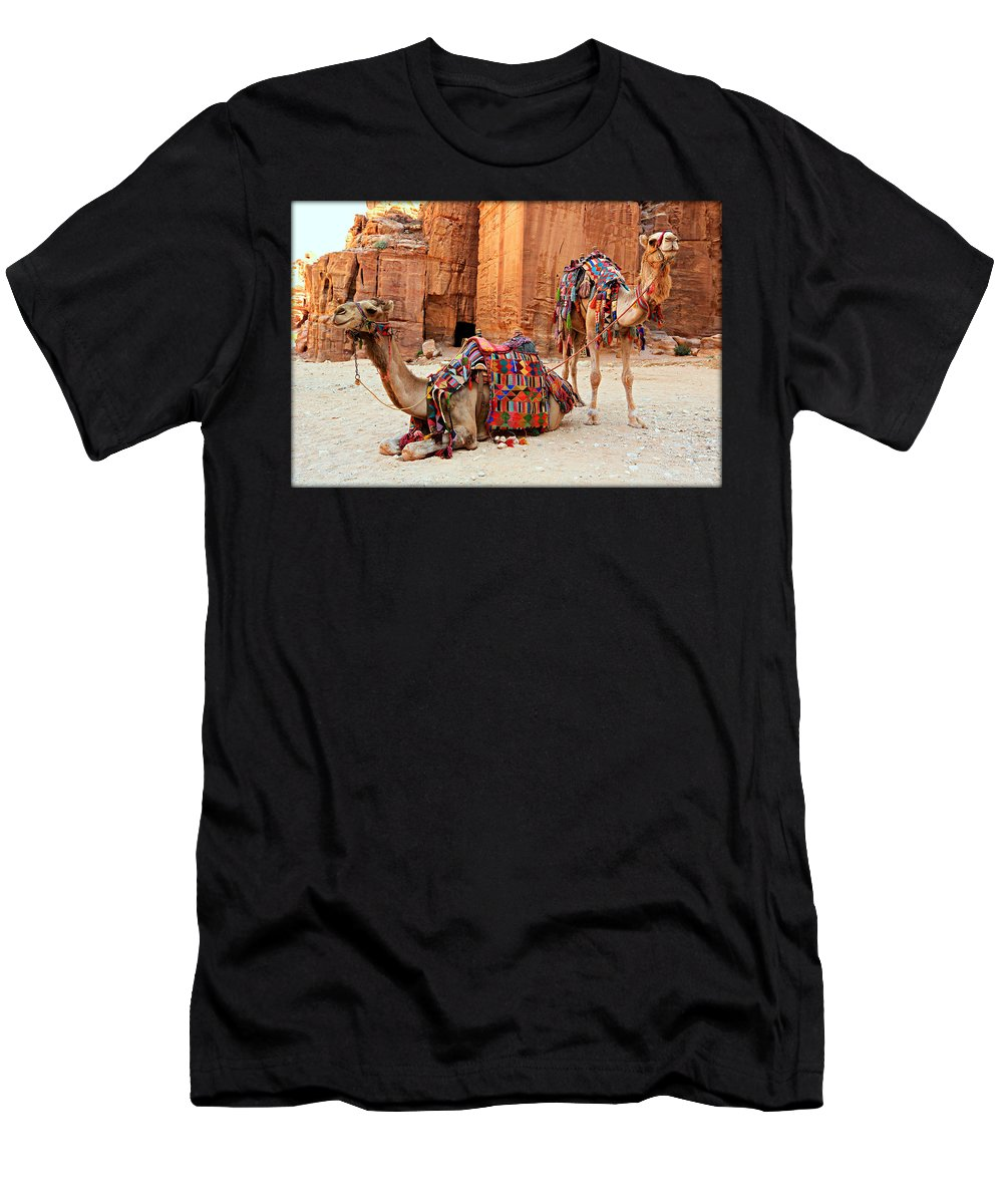 Ancient Men's T-Shirt (Athletic Fit) featuring the photograph Petra Camels by Stephen Stookey