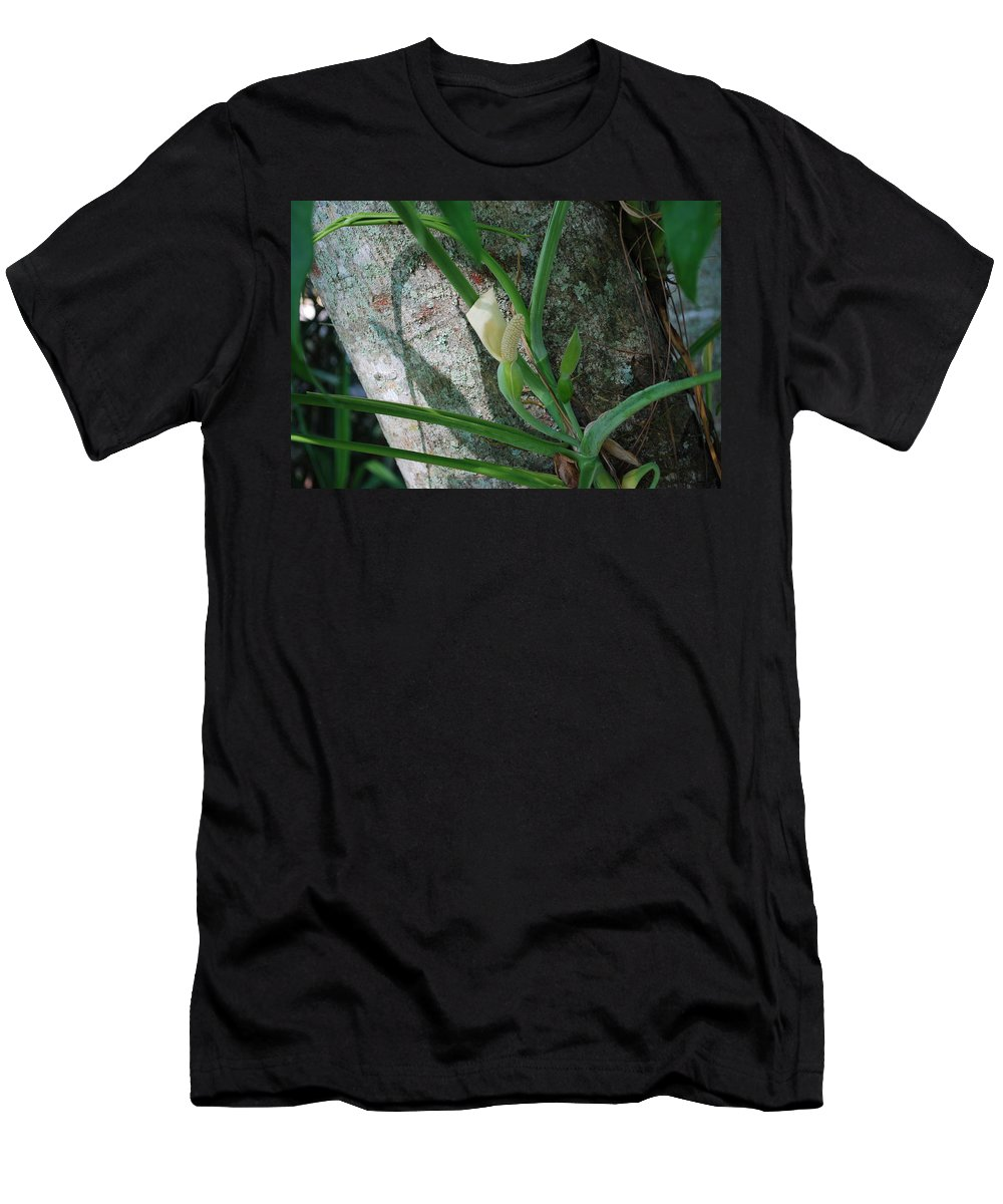 Tree Climber Men's T-Shirt (Athletic Fit) featuring the photograph Philodendron by Robert Floyd