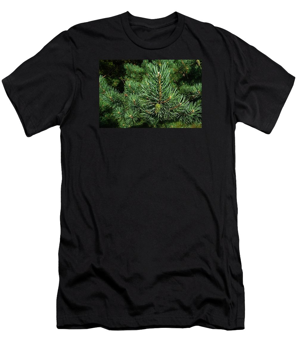 Pines Men's T-Shirt (Athletic Fit) featuring the photograph Pines by FL collection