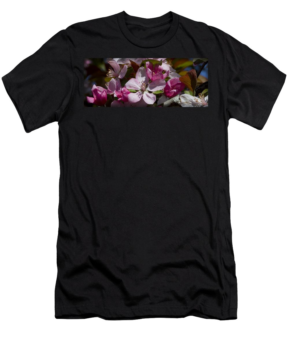 Malus Men's T-Shirt (Athletic Fit) featuring the photograph Pink And Pretty by Kathy Clark