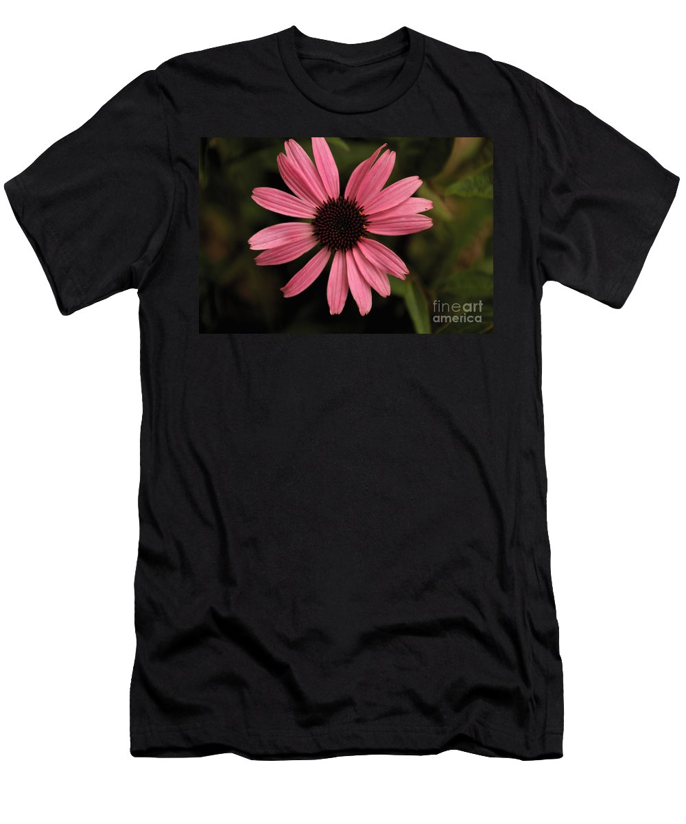 Daisy Men's T-Shirt (Athletic Fit) featuring the photograph Pink Daisy by William Norton