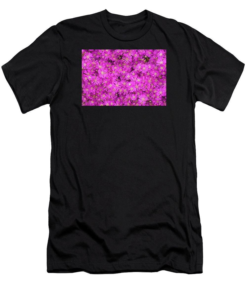 Daisy Men's T-Shirt (Athletic Fit) featuring the photograph Pink Flowers by FL collection