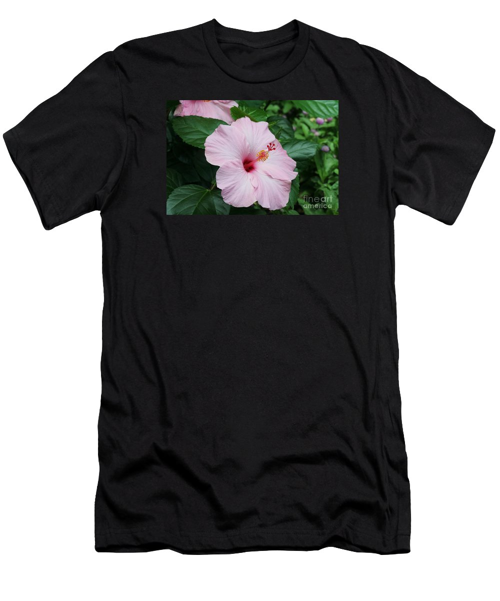 Pink Hibiscus Men's T-Shirt (Athletic Fit) featuring the photograph Pink Hibiscus #3 by Judy Whitton