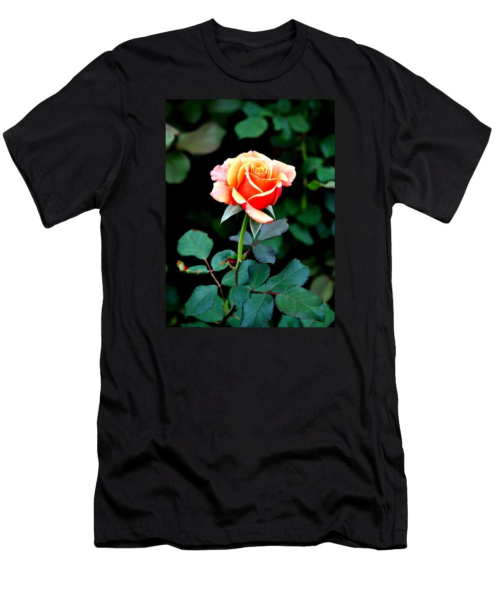 Rose Men's T-Shirt (Athletic Fit) featuring the photograph Pinkish Peach by Jay Milo