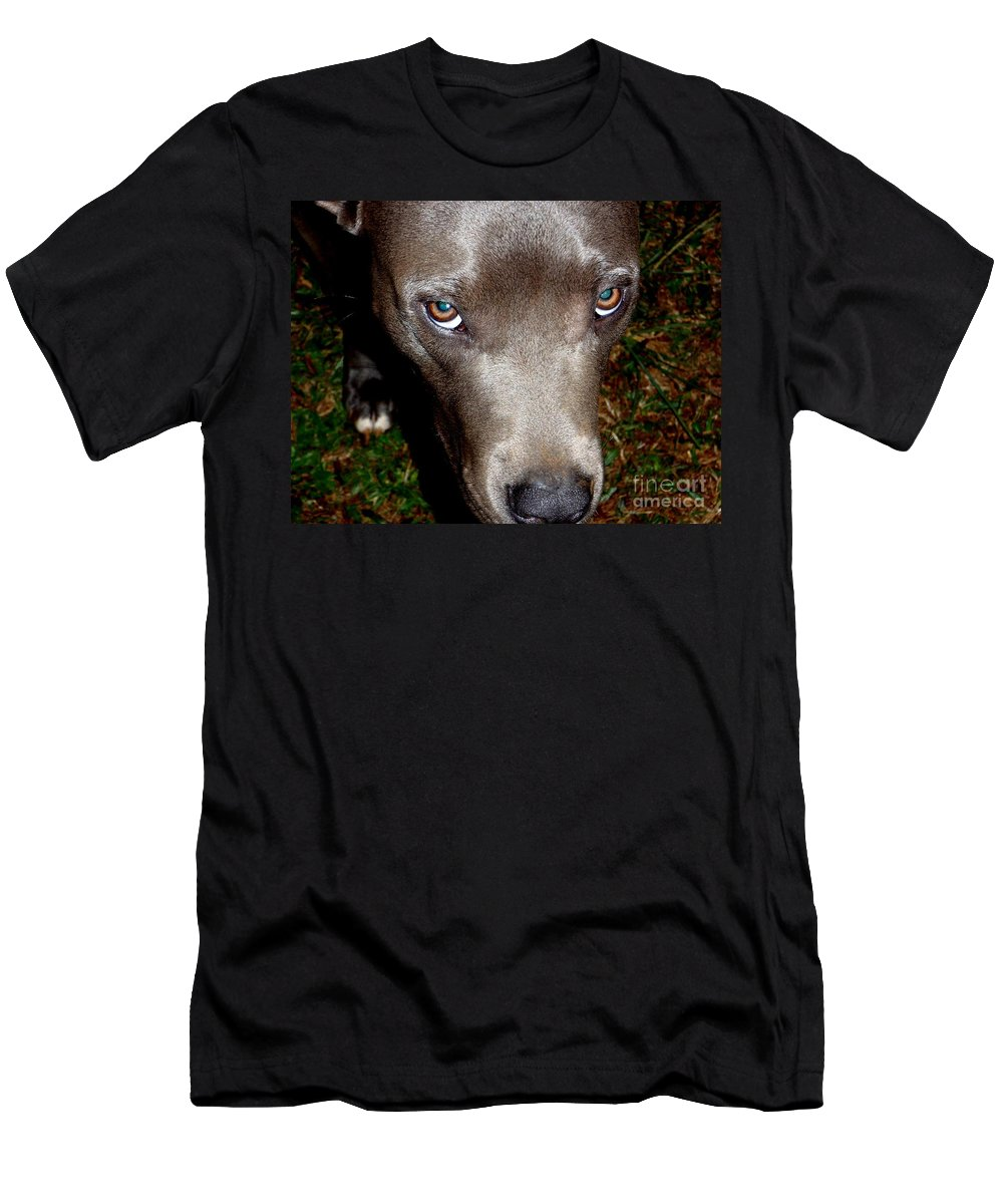 Brown Men's T-Shirt (Athletic Fit) featuring the photograph Pit Bull - 1 by Mary Deal