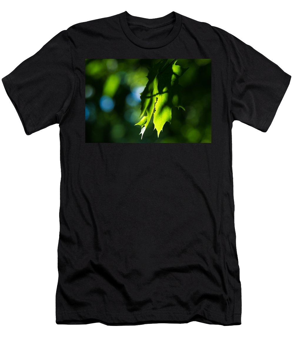 Abstract Men's T-Shirt (Athletic Fit) featuring the photograph Play Of Light On Maple Leaves by Alexander Senin