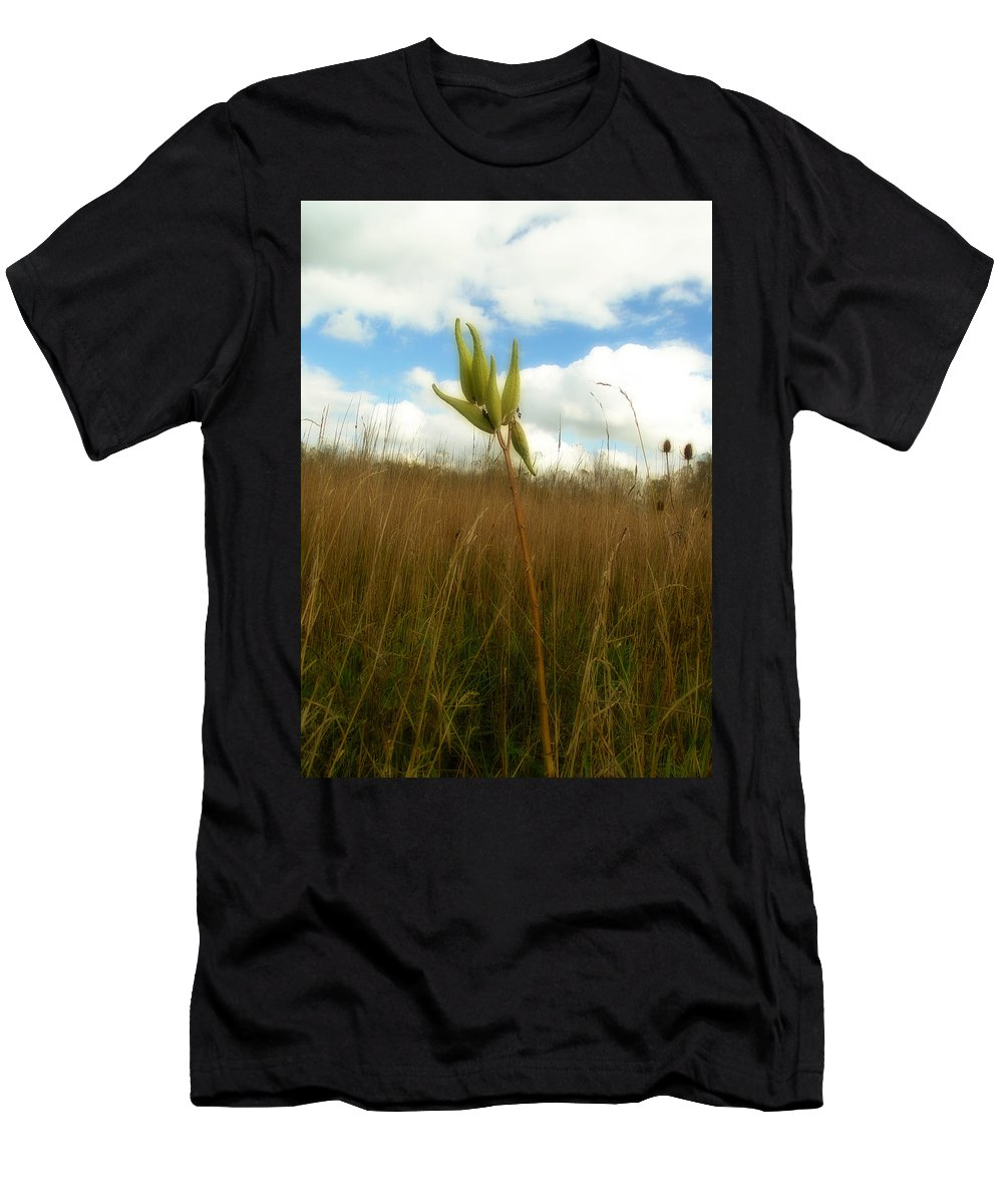 Milkweed Men's T-Shirt (Athletic Fit) featuring the photograph Pods by Gothicrow Images