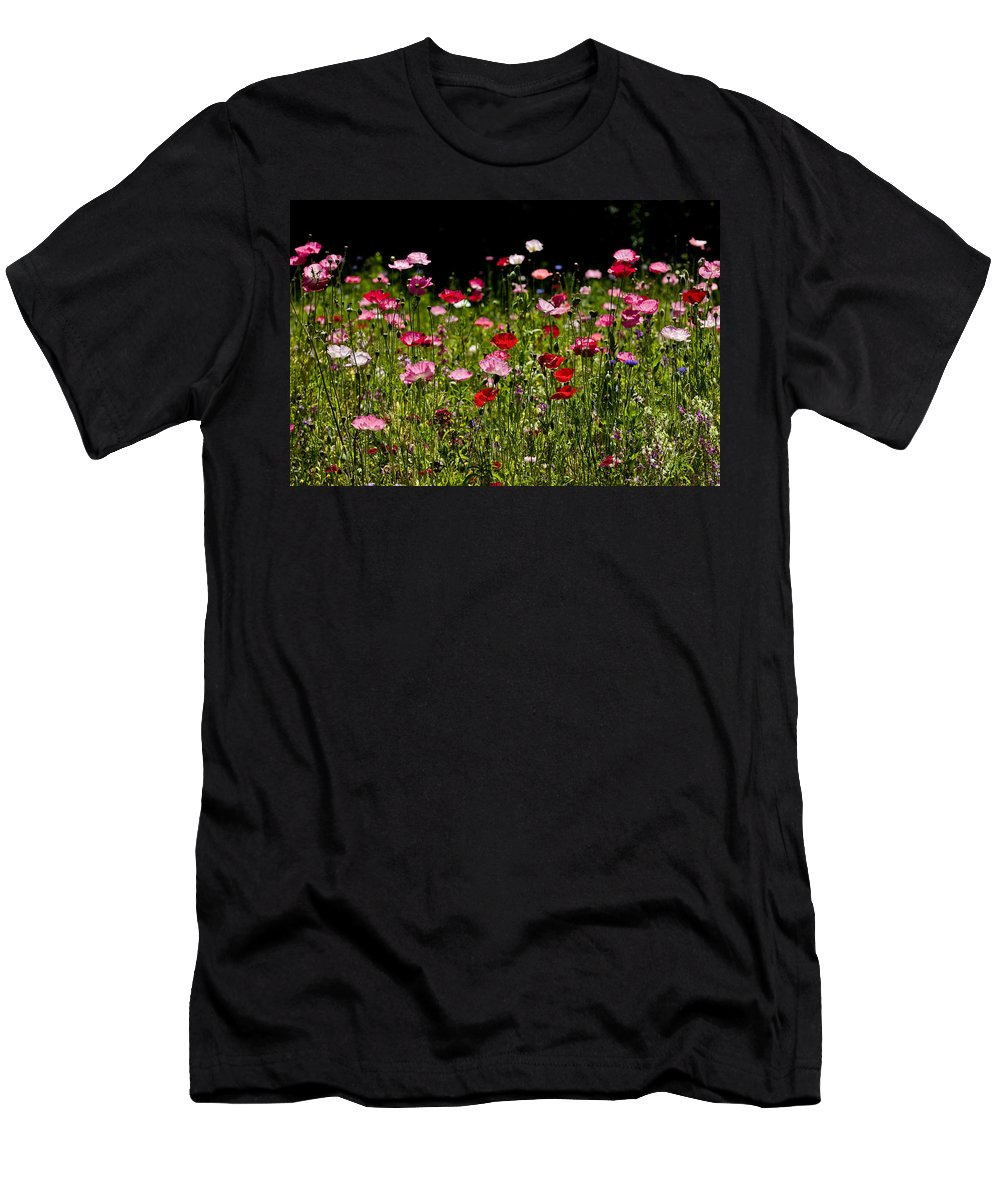 Poppies Men's T-Shirt (Athletic Fit) featuring the photograph Poppies Gettin Sun by Rich Franco
